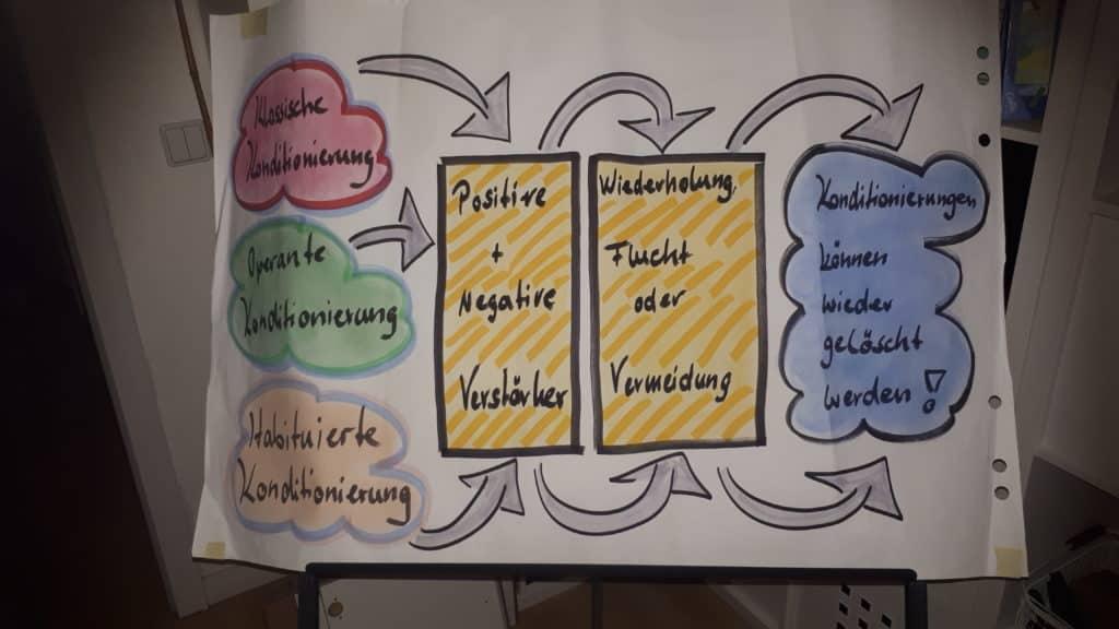 Konditionierung können wieder gelöscht werden (c) Silvia Füßl / safestata.de